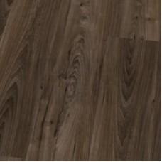 Ламинат Balterio коллекция Authentic style plus Вяз бариста 789 / AST+ DK789
