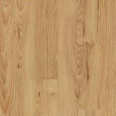 Ламинат Balterio Вяз Карамельный коллекция Xperience Flat New 60755